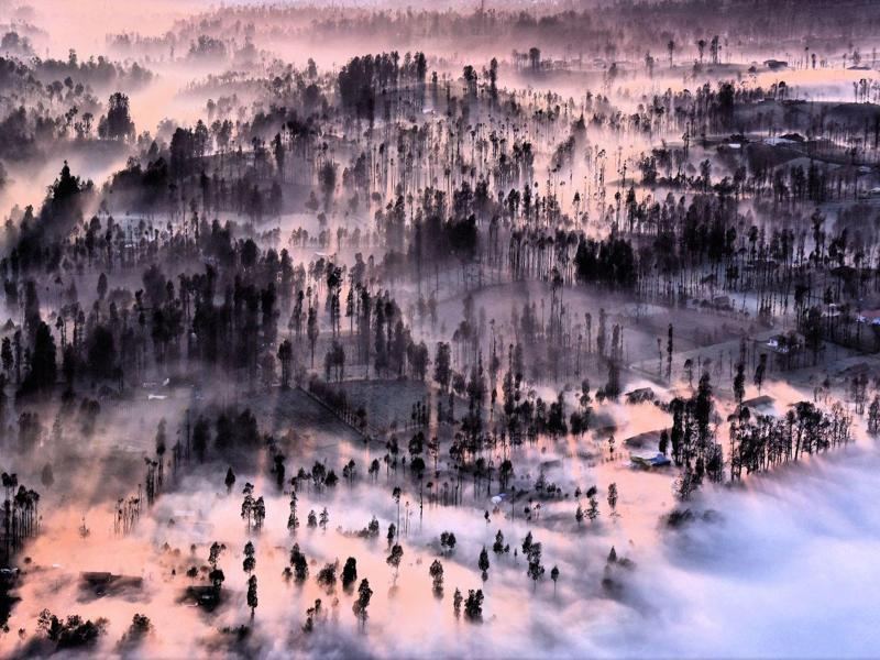 'Misty at Cemoro Lawang' in Malang, East Java, Indonesia: Misty morning, fill in Cemoro lawang village in Mount Bromo East Java, I taken this picture from Pananjakan Hills II. (Photo and caption by Achmad Sumawijaya) (National Geographic)