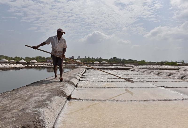 The workers have to spread the slush around in the rectangular beds to aid evaporation. (Pratham Gokhale)