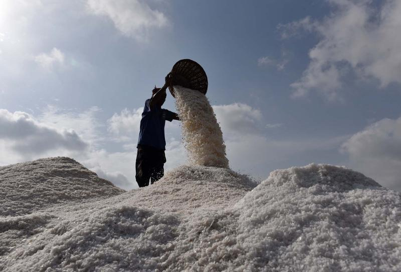 Workers at Mumbai's saltpans are scrambling to make as much salt as they can before the monsoon sets in.  (Pratham Gokhale)