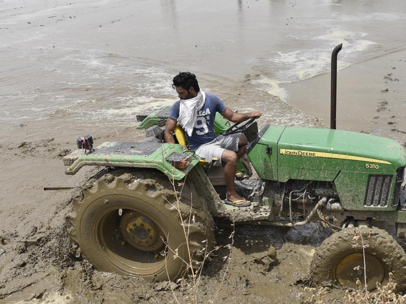 Preparing for sowing paddy near Amritsar on Tuesday. Most of the work is done by migrant workers from Bihar, UP, and Odisha; while mechanised parts of the work are still done by locals. (Gurpreet Singh/HT Photo)
