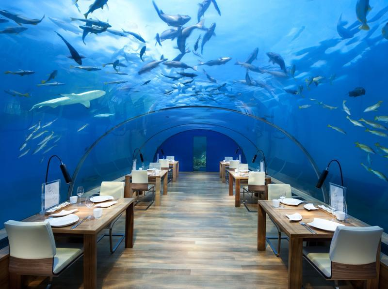 "When the Hurawalhi Island Resort opens this winter, it will also open the doors to the ""5.8"" undersea restaurant, named after its watery location 5.8 meters under the lagoon. (AFP)"