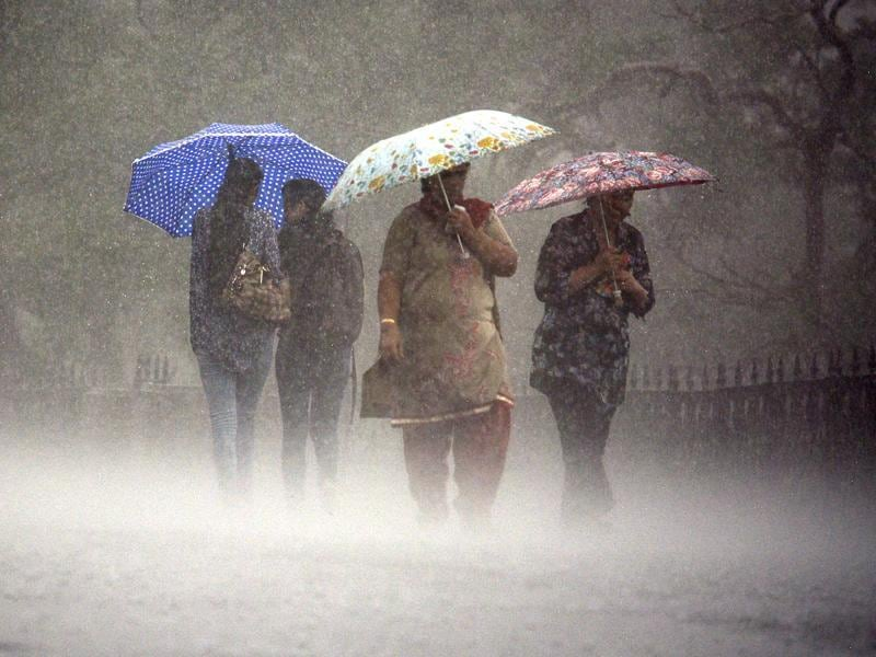 The rain was heavy in Shimla and other parts of Himachal Pradesh. (Deepak Sansta/HT)