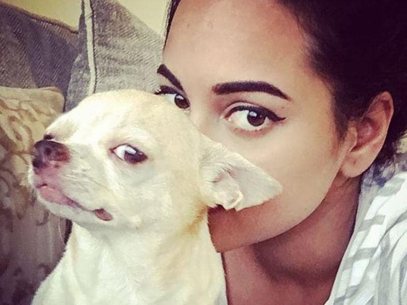 "Sonakshi Sinha's dog is just too cute. And yes, ""Hes got the look!"" (Instagram)"