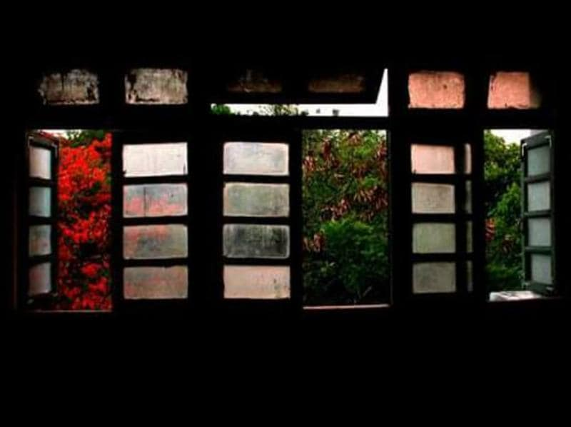 Looking out, a blossoming tree, a fading sun and some dry leaves beautifully juxtapose into the history this window has been through. Numerable debates, procrastinations and some indoor shoots have made this window thick with coats of paint, and made it well-seasoned.  - Pune (Photo: Kumar Avyaya)
