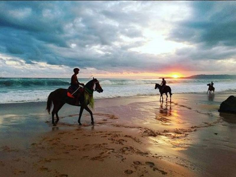 Horse riding and Equine Alignment Therapy is one of the many activities guests can indulge in at the hotel.  (instagram)
