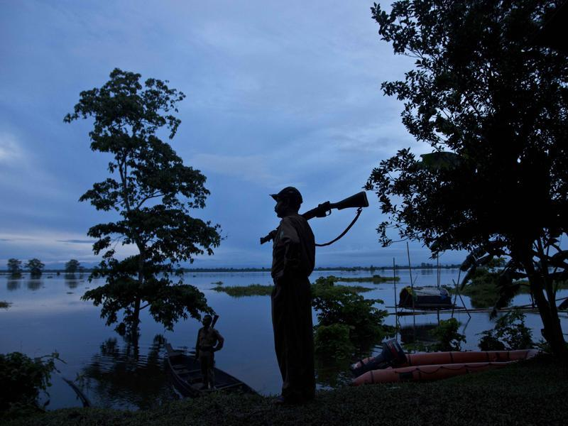 A forest guard keeps vigil at the flooded Kaziranga National Park. (AP Photo)