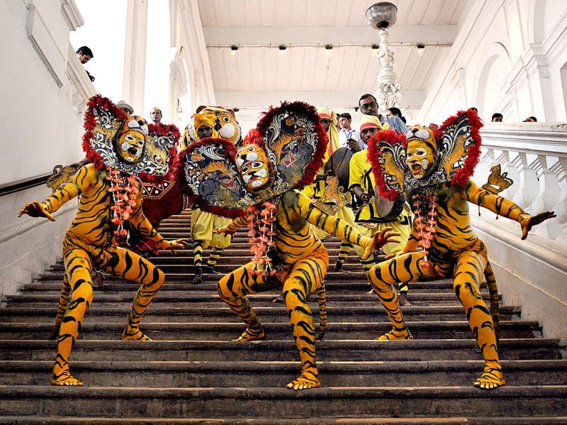 A matter of celebration:  The Indian Museum's quirky, colourful performance celebrating International Tiger Day in Kolkata. India's tiger population has reached almost 2,500 in 2016, up from 2,226 two years ago, but experts argue that the numbers may be skewed.  (ASHOK NATH DEY/HT PHOTO)