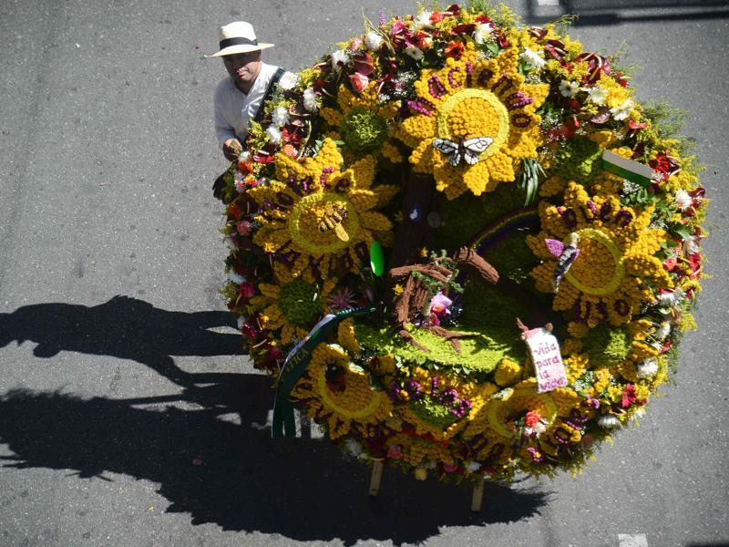 Sunflowers galore! A man with his yellow flowers at Silleteros parade. (AFP)