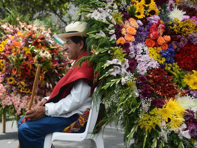Roses, sunflowers, gladioli... a man sits in the company of bright and colourful flowers. (AFP)