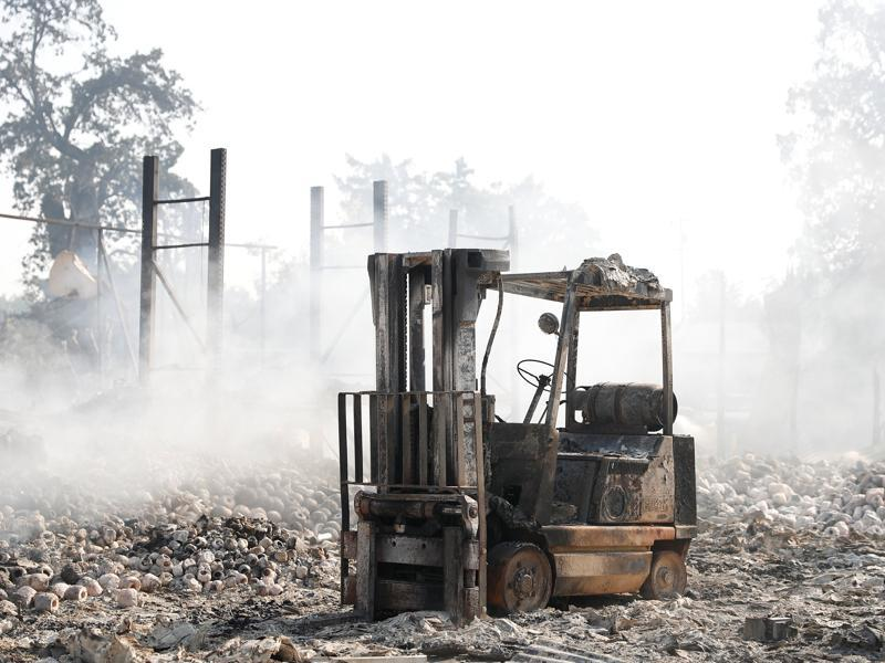 A burned forklift stands in the middle of a destroyed property during Clayton Fire at Lower Lake in California, US.  (Reuters Photo)