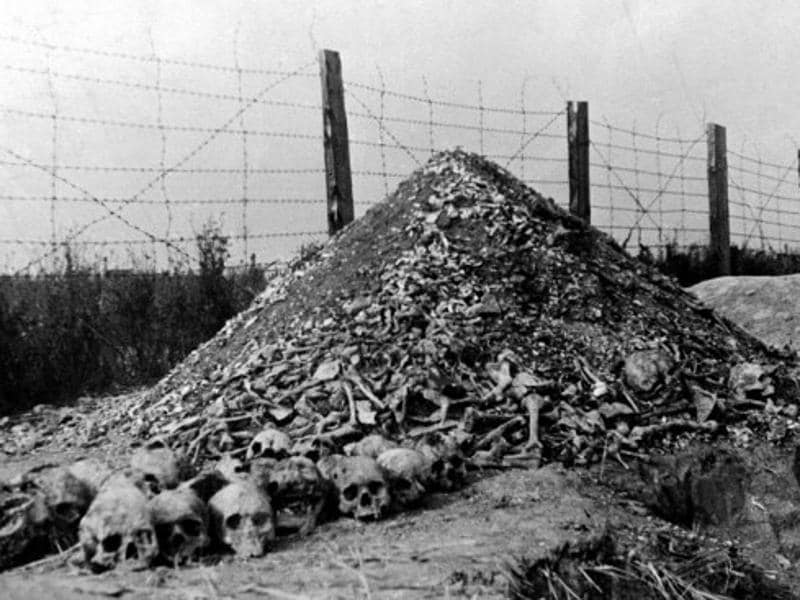 the many atrocities and human cost of the holocaust in germany Holocaust or holohoax --21 amazing facts of world war two including many atrocities the official holocaust narrative will probably cost you.