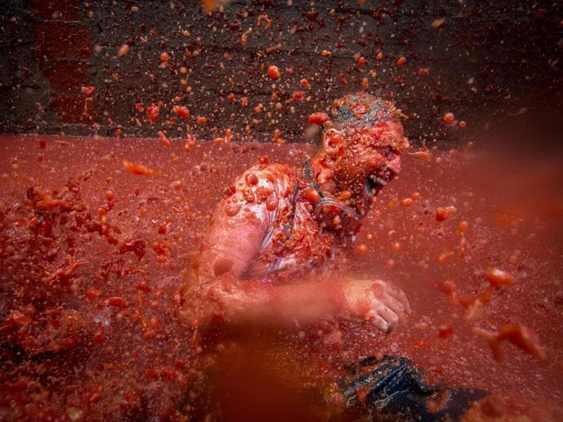 Spanish festival, La Tomatina, is held every year in the town of Bunol in the Valencia region of the country. A reveller is pelted with tomato pulp during the annual festivities on August 31, 2016.  (AFP)