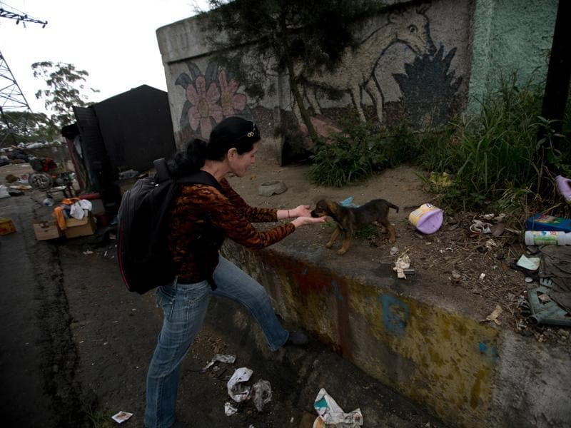 Katty Quintas, part owner of the Funasissi animal shelter, comes across an abandoned dog rummaging in the trash. (AP)