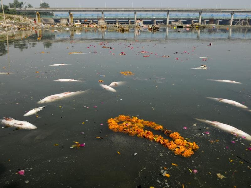 Religious offerings from devotees and leftover wooden frames, idols, earthen lamps and other debris pile up on the banks of Yamuna river after the end of Ganesh Chaturthi, in Noida on September 16, 2016. Considered one of the holiest rivers in India, the Yamuna River has been dying a slow death from pollution for decades despite the investment of millions of dollars to preserve its ecosystem. Yamuna in Delhi is almost dead with water not suitable for even bathing at most places, let alone supporting aquatic life. This is primarily due to the high ammonia levels in the high discharge of industrial pollutants in the river. (Burhaan Kinu/HT PHOTO)