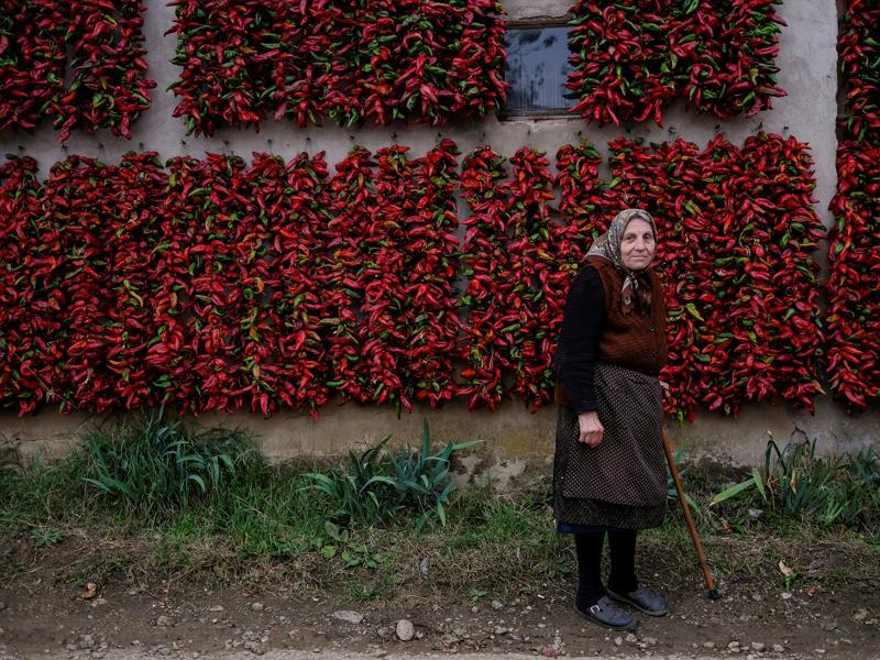 Paprika is to Serbs, what apples are to Americans, says a Lonely Planet blog. They associate it with home and hearth. A woman poses for a picture as bunches of paprika in the background. (REUTERS)
