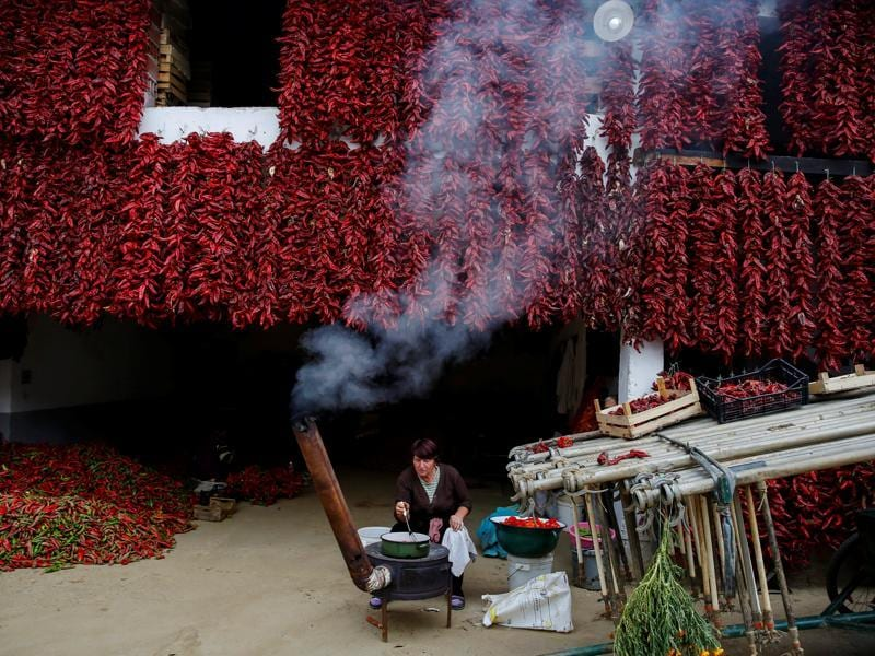 Paprika is a spice made from air-dried fruits of the chili pepper. A Serbian woman cooks as bunches of paprika hang on the wall of her house. (REUTERS)