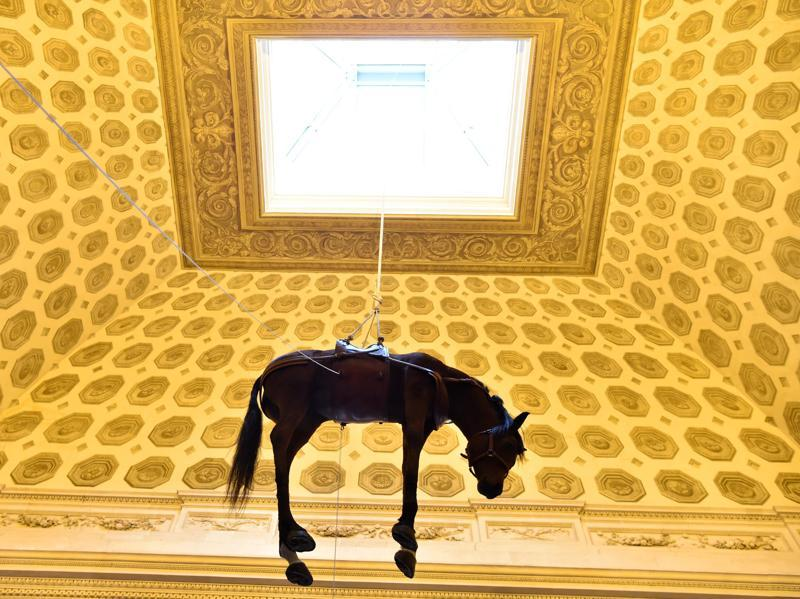 He made his name with his playful and subversive works. A hanging horse by Cattelan as part of his Paris exhibition on October 17, 2016.  (AFP)
