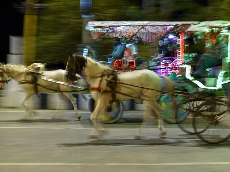 As they go whizzing past the city's colourful facades, it still remains a question if their future will gallop at the same pace. (Vijayanand Gupta/HT PHOTO)