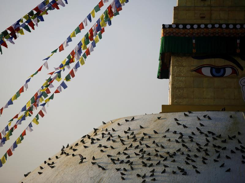 Pigeons rest on the dome of Nepal's Boudhanath stupa, as the country celebrates the official completion of restoration work on the historic site, which was damaged in the country's 2015 earthquake.  (REUTERS)