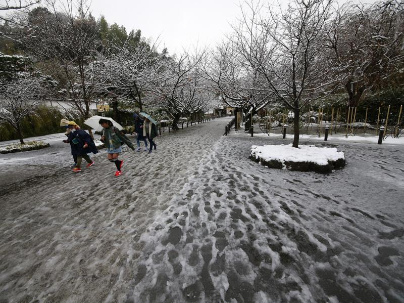 People walk in the snow at the Kenchoji temple in Kamakura, near Tokyo. (AP Photo)