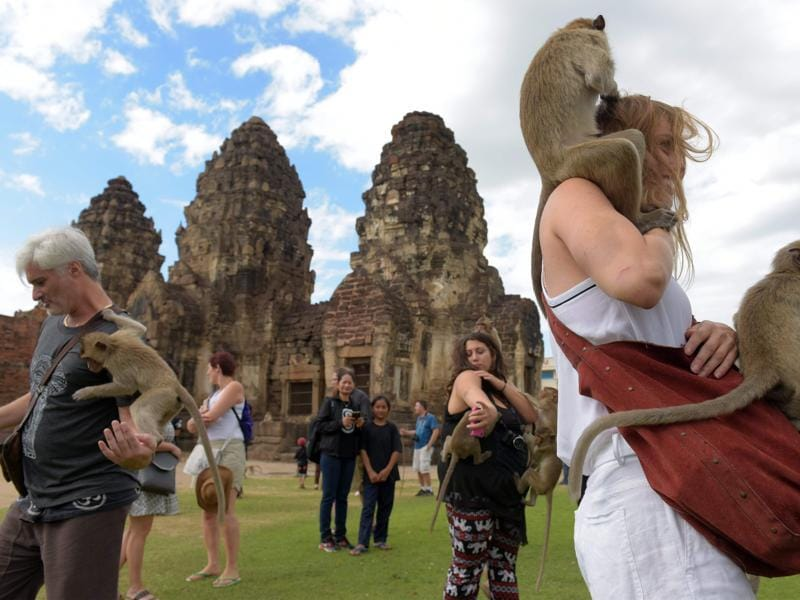 Monkeys jump up onto tourists at an ancient temple during the annual