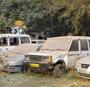 Auction of 600 abandoned vehicles