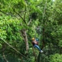 Man dies, wife injured at the Jungle Surfing in Australia's Daintree rainforest