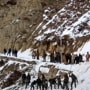 News updates from Hindustan Times at 9 PM: 8 soldiers trapped in snow after avalanche hits patrol in Siachen and all the latest news at this hour