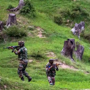 Govt to celebrate fourth Surgical Strike Day on Monday
