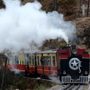 Kalka-Shimla 'Himalayan Queen' to resume operations from today