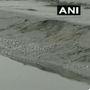 With advent of winter Surat witnesses arrival of migratory birds. Watch