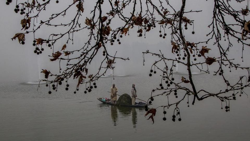 Kashmiri workers row their boat towards shore after removing weed on a cold and foggy day at the Dal Lake in Srinagar on Tuesday. Cold conditions continued in most parts of Kashmir with fog affecting air traffic and normal life. (AP)