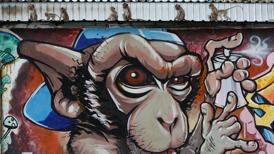 Monkeys sit on a graffiti wall during the Monkey Buffet Festival, near the Phra Prang Sam Yot temple in Lopburi province, north of Bangkok, Thailand November 27, 2016. REUTERS/Chaiwat Subprasom. (REUTERS)