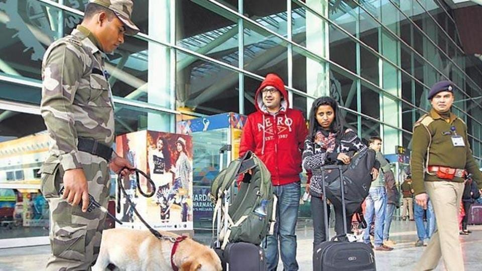 A CISF sniffer dog checks baggage at the international airport in Delhi. Security at the airport has been busy checking for people with illegal cash.