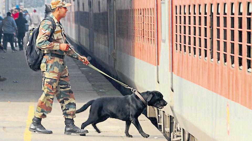 A soldier and a sniffer dog checking the Archana Express at Jalandhar Cantonment railway station on Tuesday.