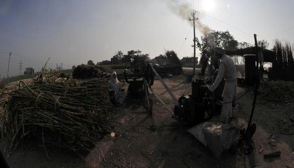 Cane and machines set for jaggery production. (Ravi Kumar/HT)