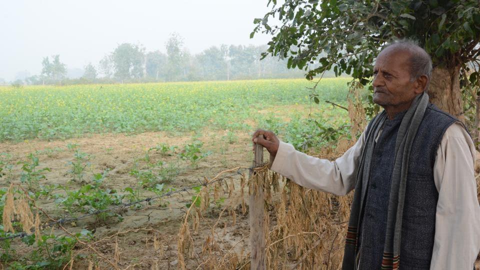 Demonetisation,Black Money,Farmers