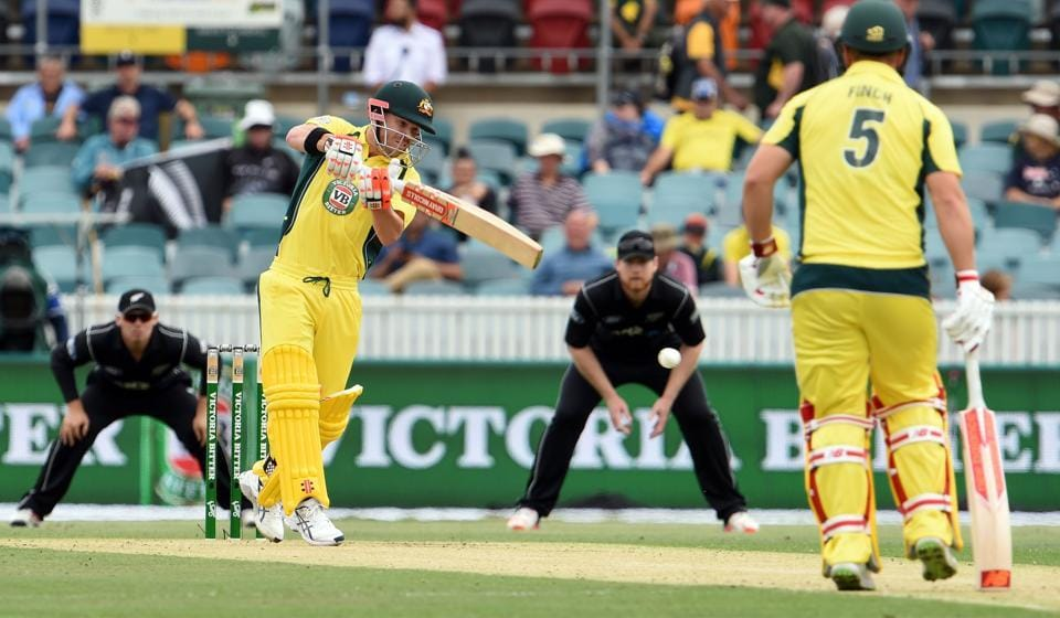 David Warner,David Warner Australia,Australia vs New Zealand