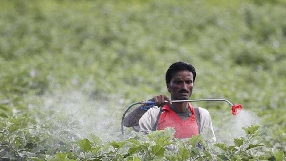Pesticides,Banned pesticides,Delhi high court