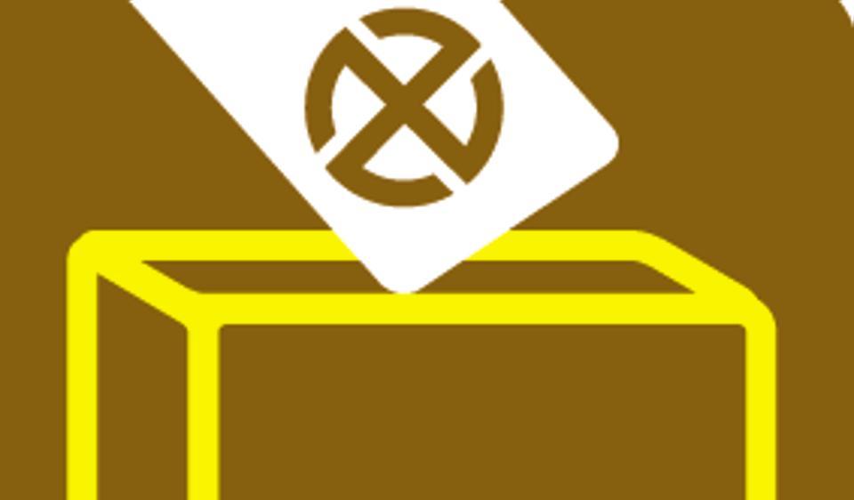 Maharashtra,State Election Commission,voter turnout