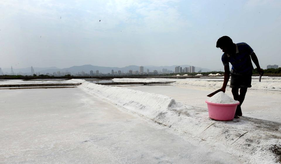 MMRDA survey says only 25 acres of the salt pan land or 0.5% of it is developable without any hurdles.