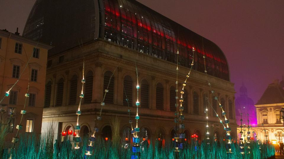 View of Arbore'Lum installation by artist Erik Barray during the rehearsal for the Festival of Lights. (REUTERS)