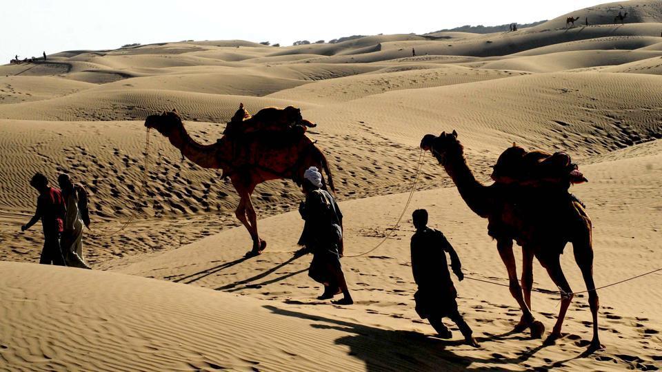 Rajasthan News,wildlife safari,Thar desert