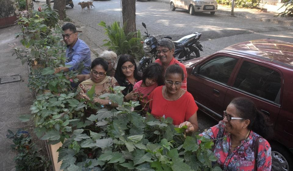 green heroes,e-waste,tree plantation