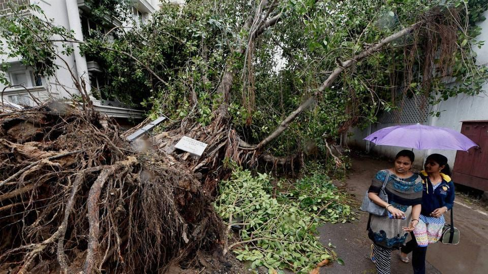 Cyclone Vardah,Chennai,December curse