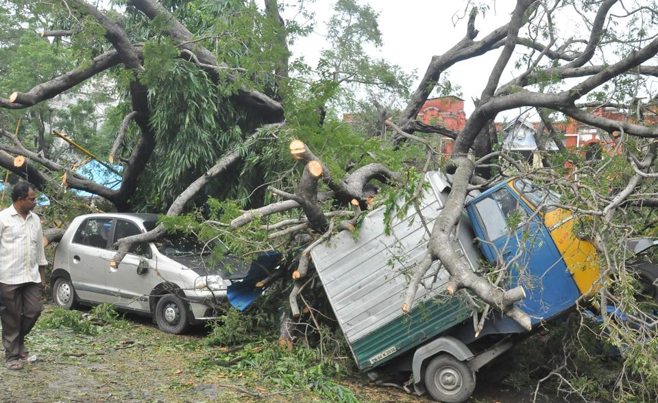 The Arunachal storm uprooted trees which blocked roads and access to many villages.