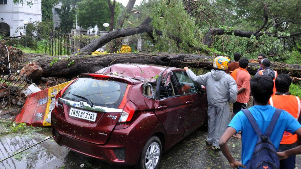 Tamil Nadu chief minister O Panneerselvam said the cyclone uprooted more than 4,000 trees but citizens claimed the number could be much higher.
