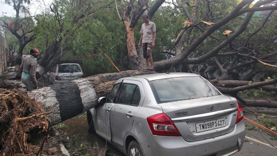 A man stands on a fallen tree that fell on a vehicle after it was uprooted by strong winds caused by cyclone Vardah, in Chennai.