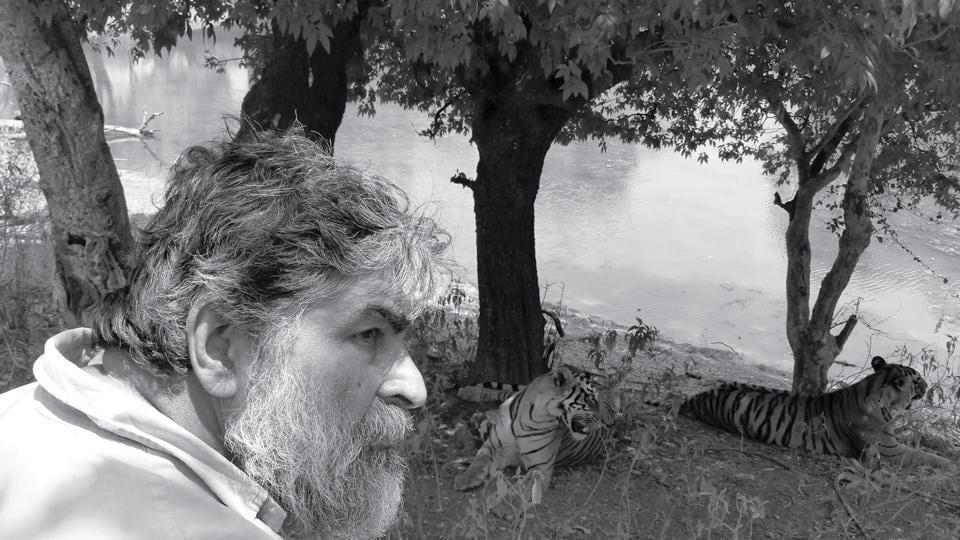 Tigers,Valmik Thapar,Ranthambhore