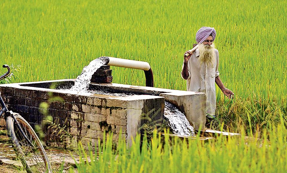 Image result for punjab kisan